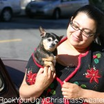 Picture of a Chihuahua in ugly Christmas sweater vest